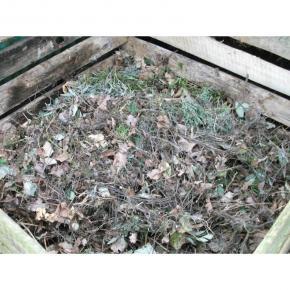 Kompostieren /Kompost verteilen